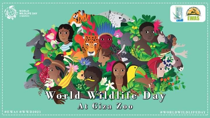 ننتظركم جميعاً للحضور يوم الأربعاء الموافق 3 مارس بحديقة الحيوان بالجيزة الساعة 11 صباحآ للاحتفال باليوم العالمي للحياه البريه