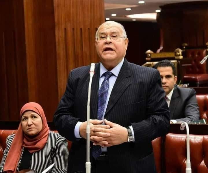 """""""الشهابي"""" يؤكد أن الدولة المصرية تستمد شرعيتها من الدستور للحفاظ علي حقوقها من مياه نهر النيل"""